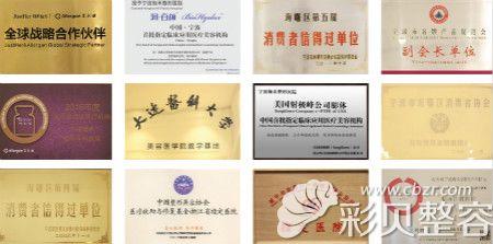宁波珈禾整形医院获得的荣誉证书